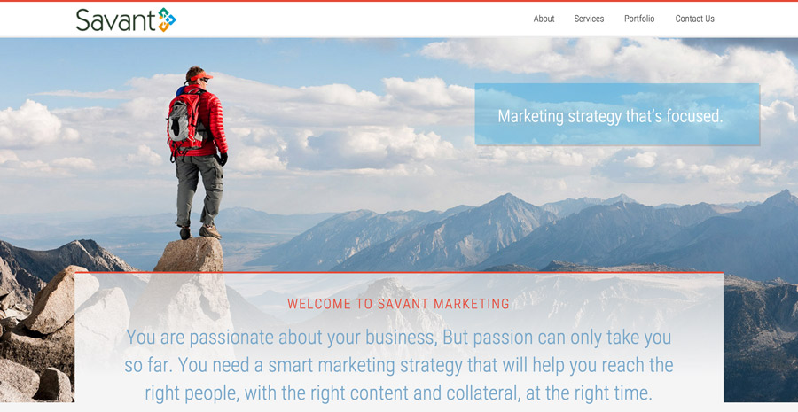 Savant Marketing Website design